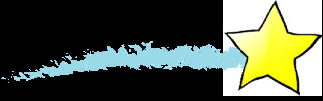 five stars program logo